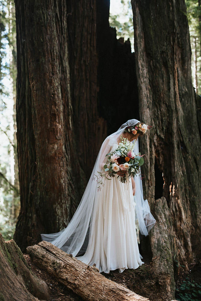 Bride's portrait in the california redwood forest