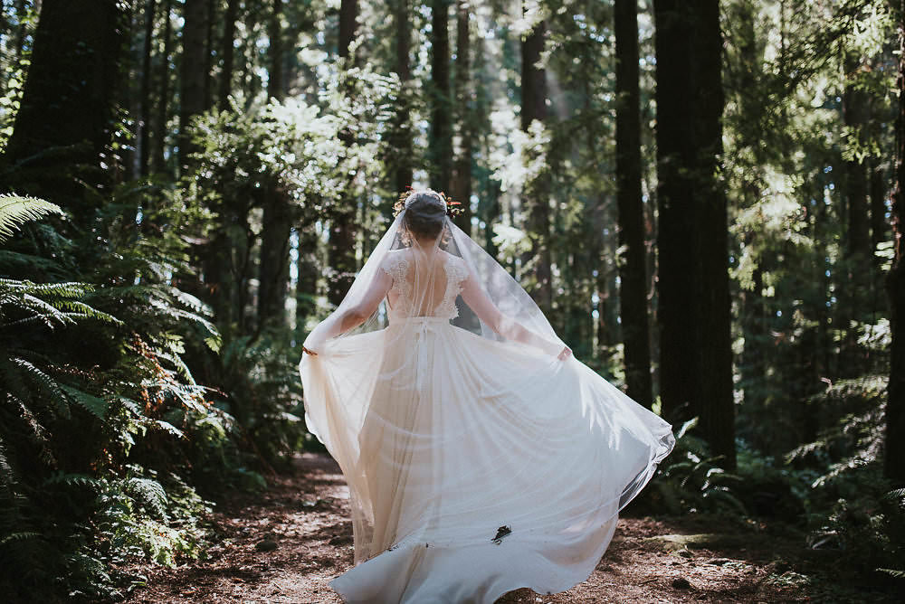 bride dancing in the redwood forest