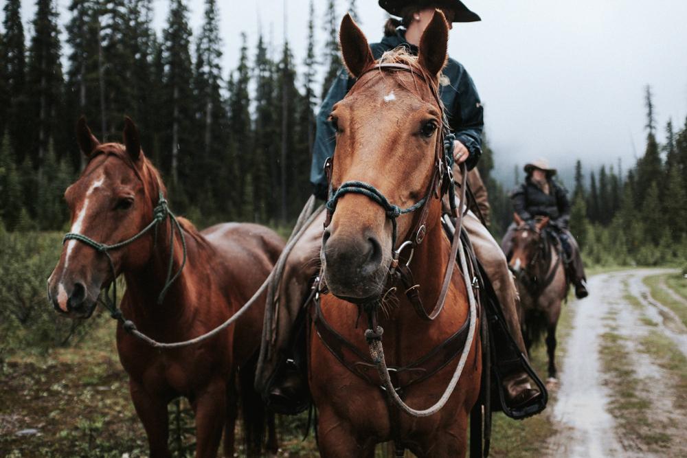 Mount Assiniboine Provincial Park, Canadian Rockies